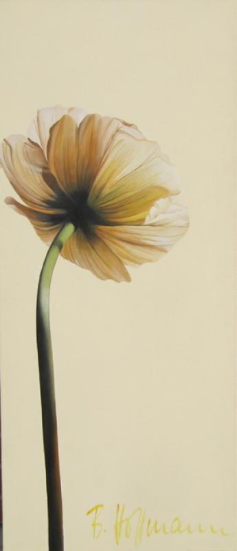 Bärbel Hoffmann Mohnblüte
