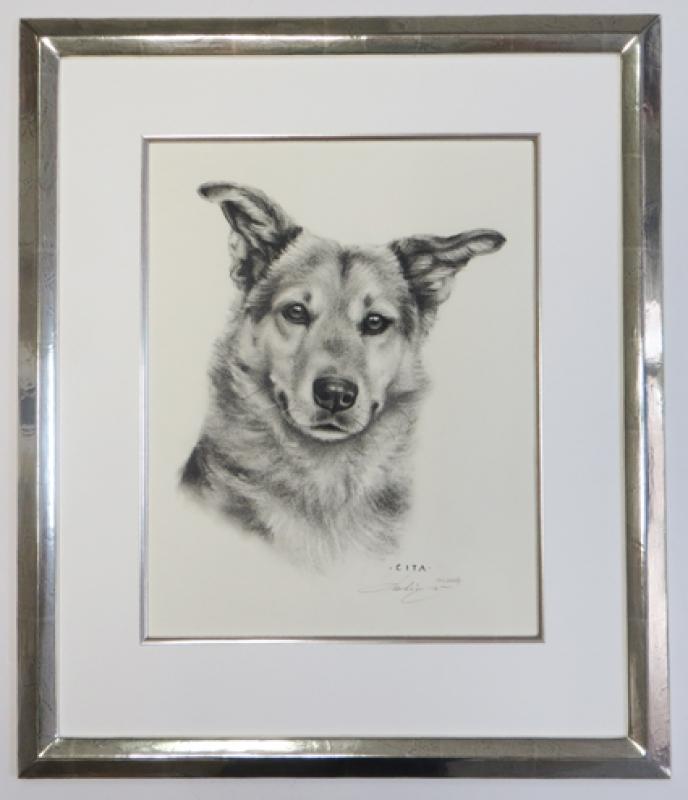 Schäferhund im Weißgold Modellrahmen