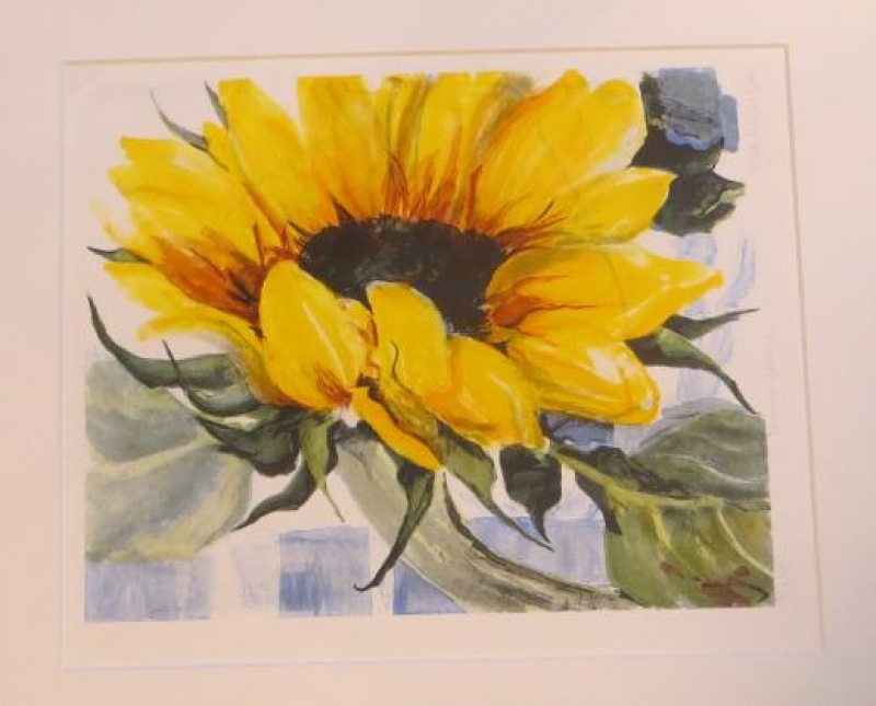 Sonnenblume Nr 182