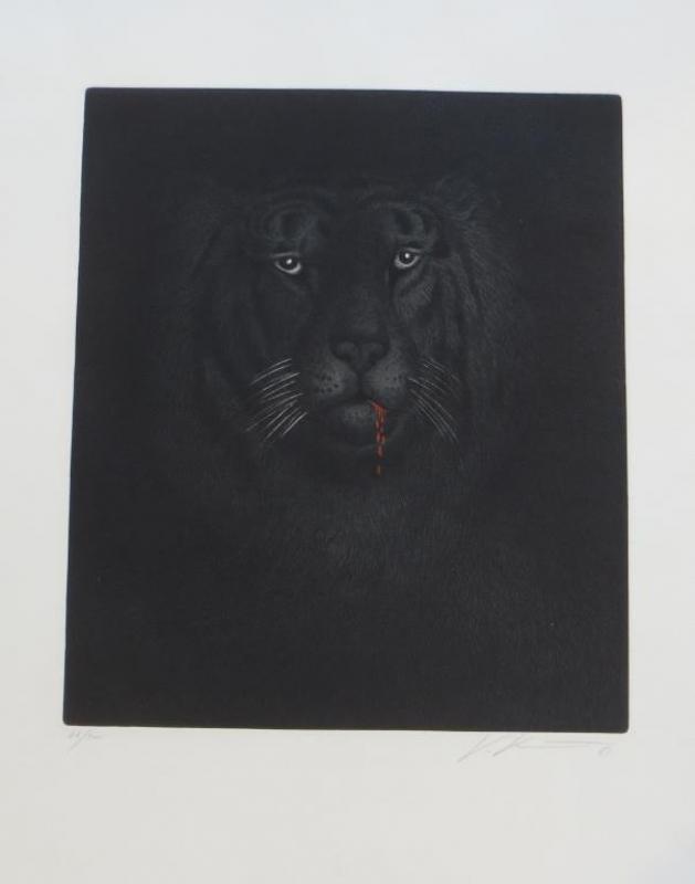 Tiger nr 521