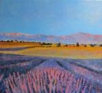 Uwe Herbst Lavendel in der Provence