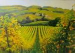 Weinberge Toscana