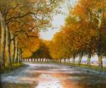 Uwe Herbst Canal du midi im Nebel