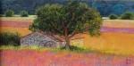 Uwe Herbst Salbeifelder