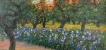 Uwe Herbst Iris und Olivenbäume
