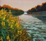 Uwe Herbst Donauauen mit gelben Iris