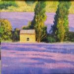 Uwe Herbst Lavendel 50x50 wehr