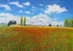 Mohnfeld in Saint Remy 67X 100x140cm