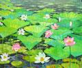 Lotusblueten von Uwe herbst bei Galerie Wehr
