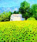 Haus mit Sonnenblumen