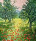 Uweherbst Mohnblumen Olivenbaeume wehr