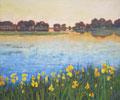 Uwe Herbst Gelbe Iris in der Camarque www.galerie-wehr.de